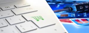 Risk Management in Digital Commerce Initiatives